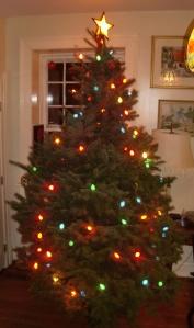 Half-naked tree.