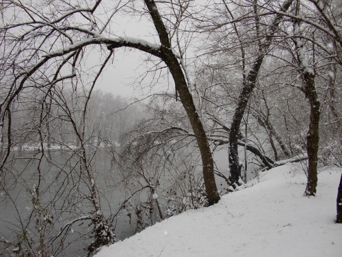 Snow scene on the Shenandoah River: March 5, 2013.