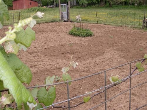 Mounds of zucchini, squash, watermellon, and canteloupe.