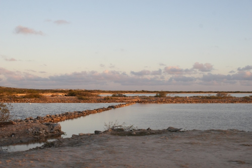 Salt Pond at Sunset.