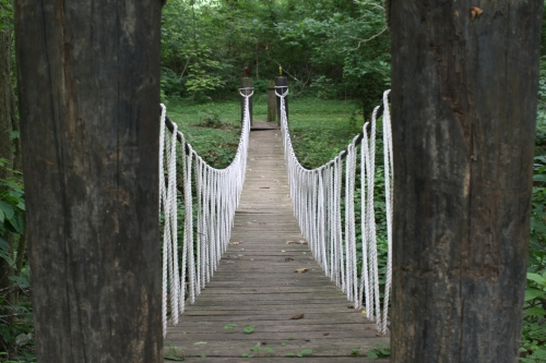 Walking Bridge
