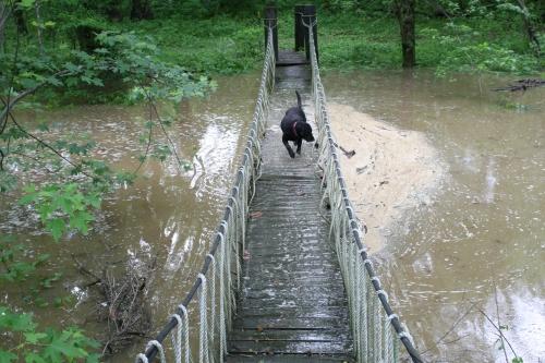Wading Bridge