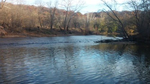 Island confluence on the Shenandoah river.