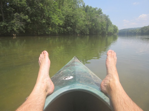 The usual view on a Shenandoah river run