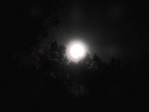 Blue Moon on the Shenandoah