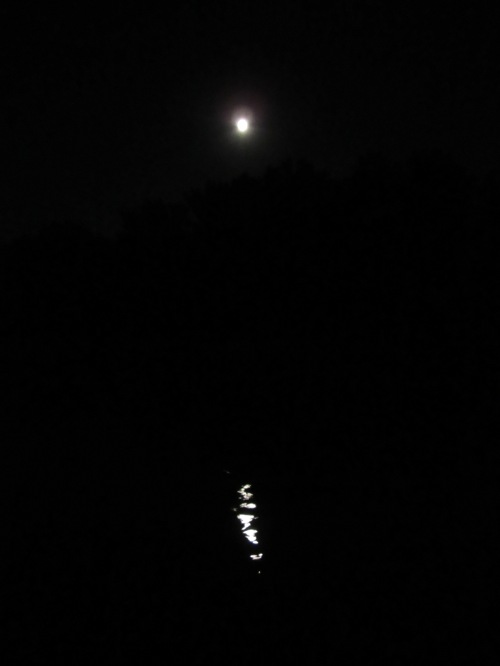 Blue Moon over West Virginia