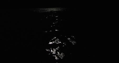 Dancing moonlight