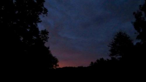 Sunrise on Leukemia Cup day
