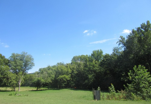 Shenandoah Blue